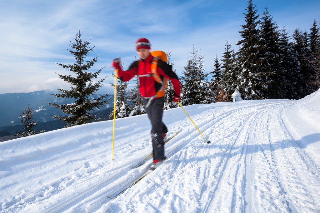 Off-season training for triathletes: cross country skiing!